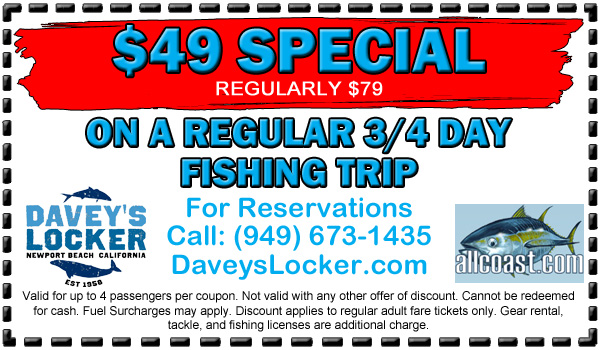 Deep sea fishing coupon davey 39 s locker for Davey s locker fish count