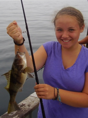 Sand bass for Fishing in orange county