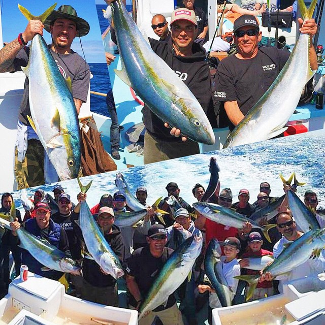 Fish count from yesterday 4 20 15 visit for Davey locker fish count