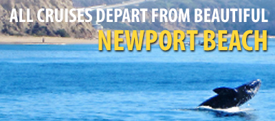 All cruises depart from beautiful Newport Beach