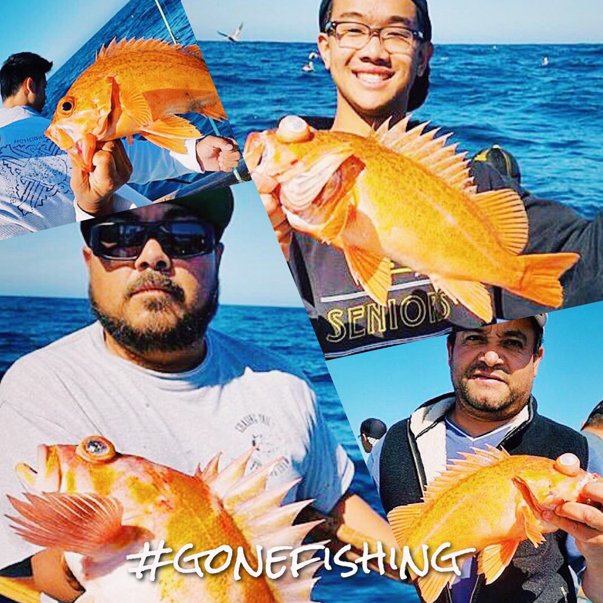 Fishing trips in southern california for Southern california fishing charters