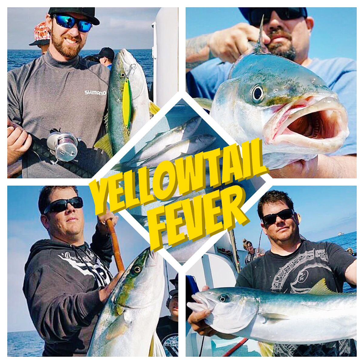 Coastal Waters Off Newport And Offs Contain Over 30 Varieties Of Fish Giant Yellowtail To 40 Pounds White Sea B Dorado Tuna