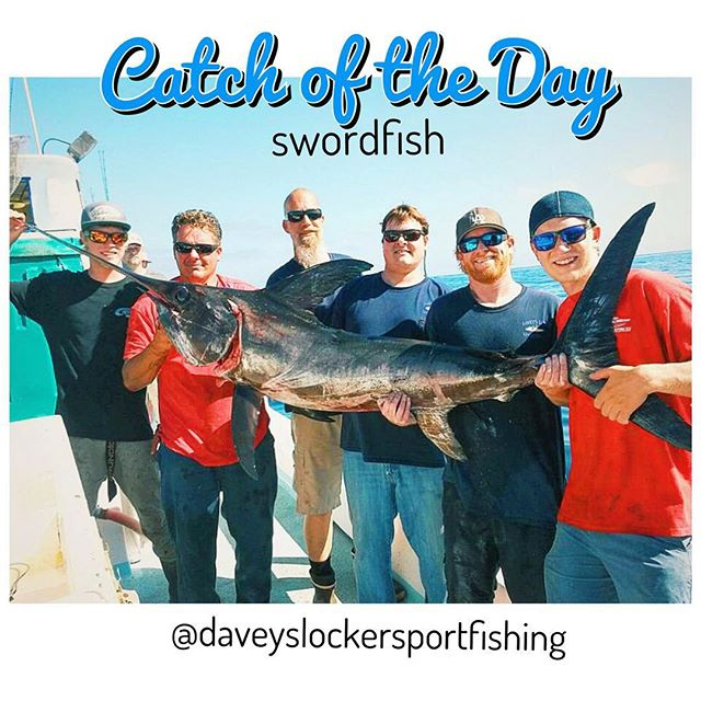A definite first for davey 39 s locker and epic catch of the for Davey s locker fish count