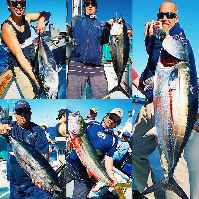 Fresh fish all day everyday summerswell tuna for Davey s locker fish count