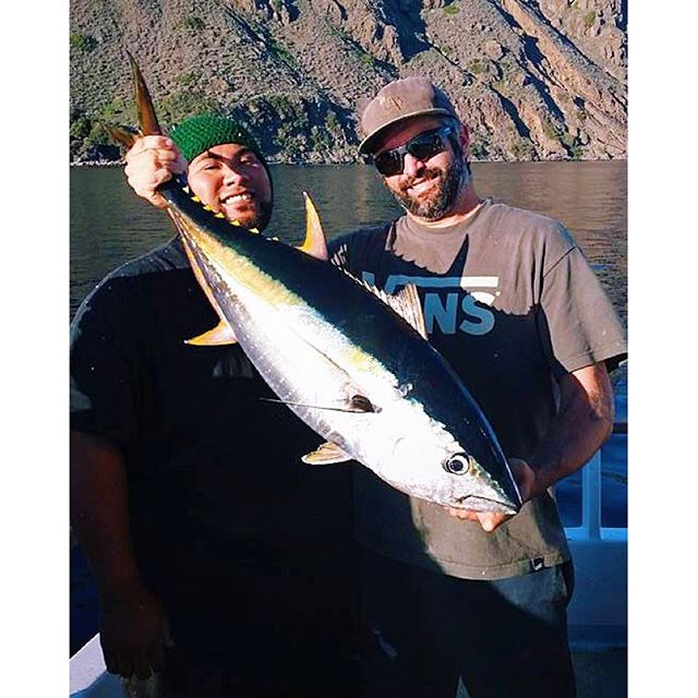 Still catching that tuna thunderbird captainjeff for Davey s locker fish count