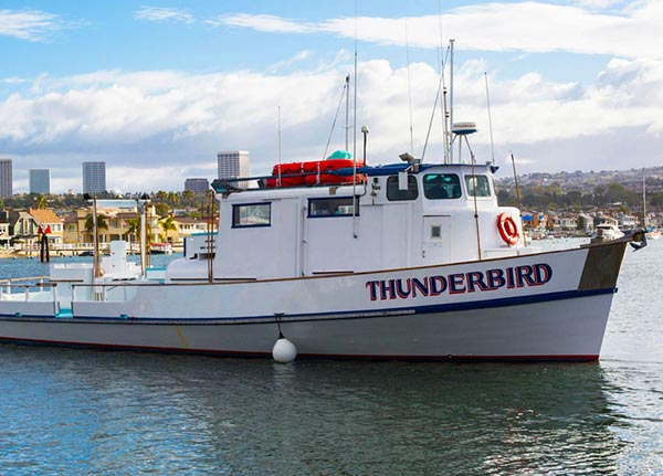 Fishing charters san diego visitors boat rentals for Fishing boat rentals