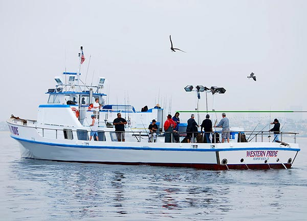 Fishing Charters San Diego Visitors Boat Rentals