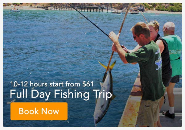 Full Day Deep Sea Fishing Orange County