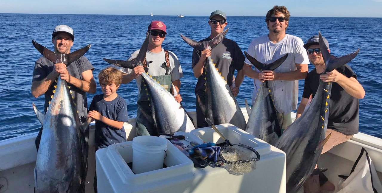 San Diego 6 Pack Tuna
